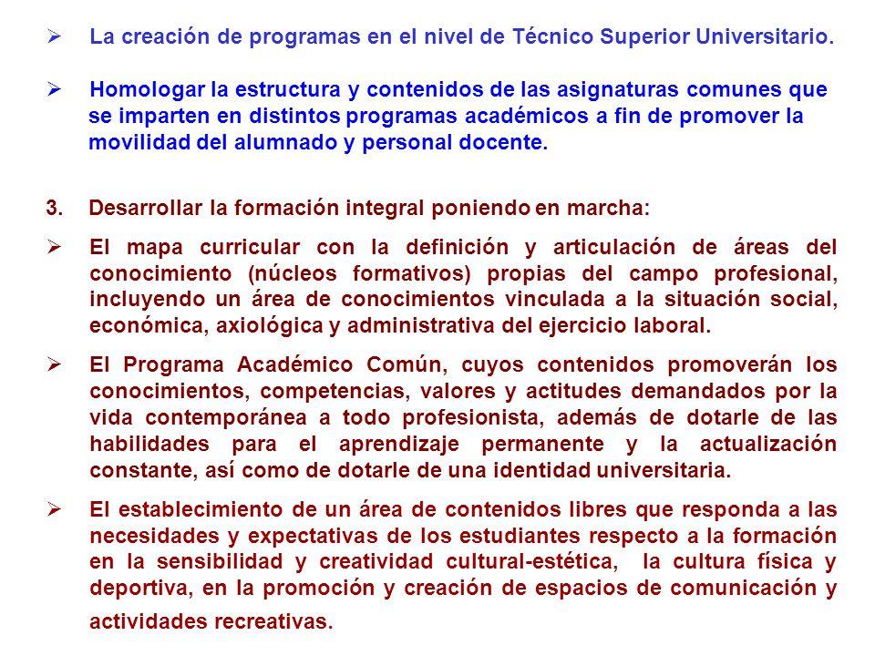 La creación de programas en el nivel de Técnico Superior Universitario.