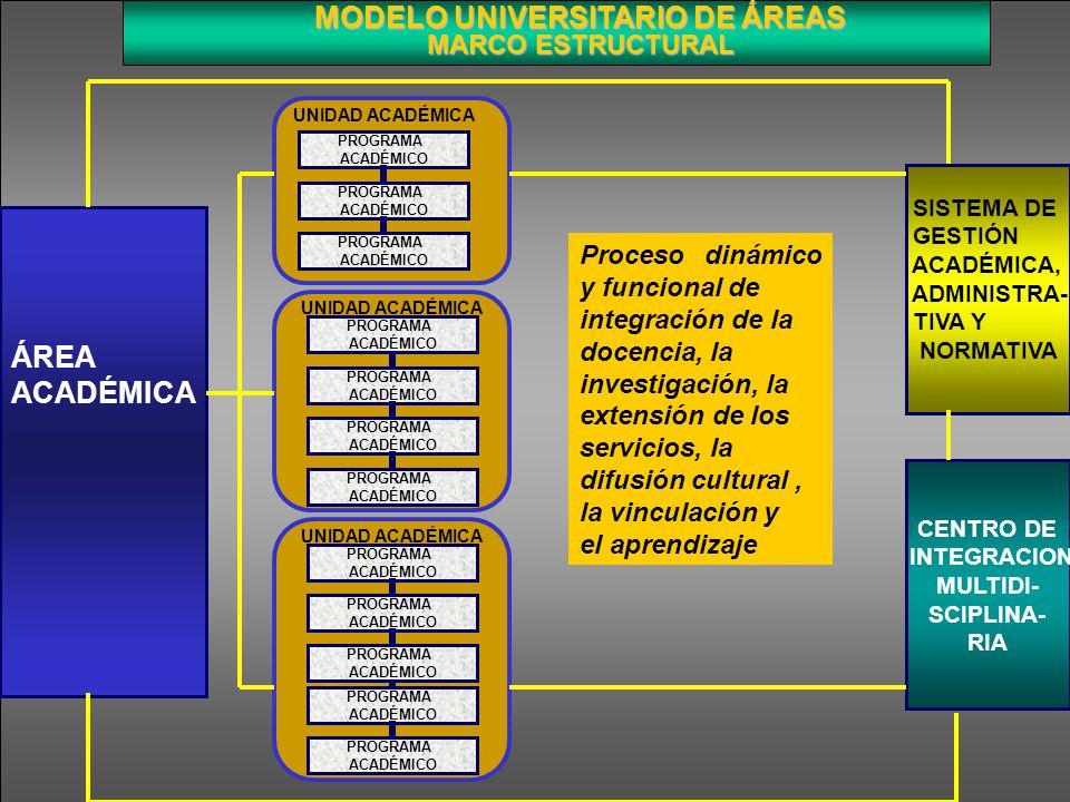 MODELO UNIVERSITARIO DE ÁREAS