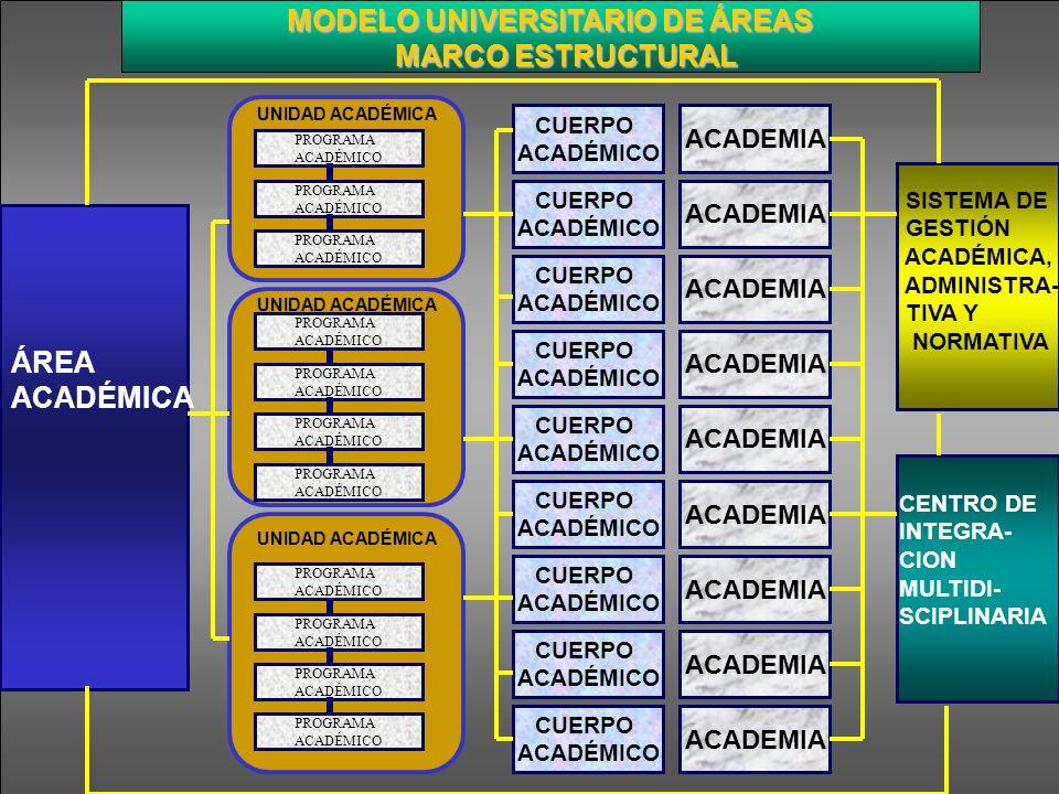 MARCO ESTRUCTURAL ÁREA ACADÉMICA MODELO UNIVERSITARIO DE ÁREAS