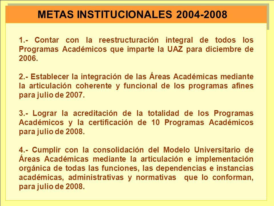 METAS INSTITUCIONALES 2004-2008