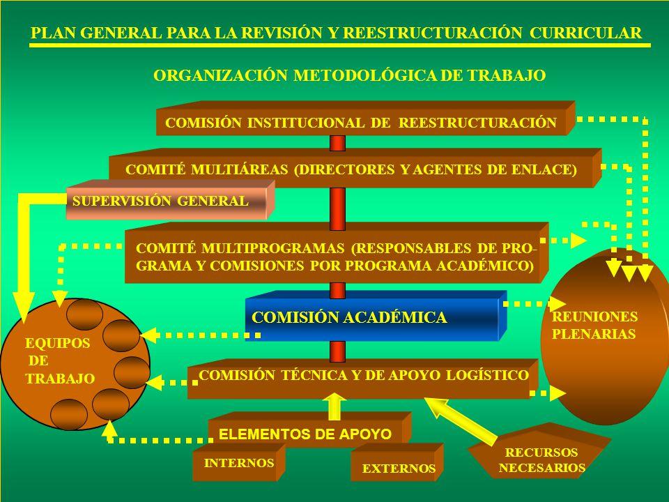ORGANIZACIÓN METODOLÓGICA DE TRABAJO