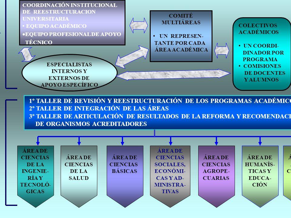 PLAN OPERATIVO PARA LA CONCRECION DE LA REESTRUCTURACION UNIVERSITARIA
