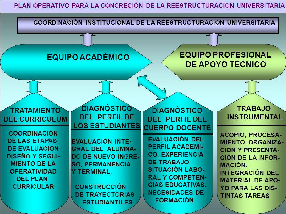 PLAN OPERATIVO PARA LA CONCRECIÓN DE LA REESTRUCTURACION UNIVERSITARIA
