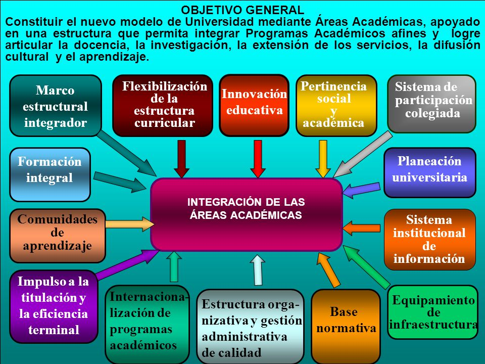 Flexibilización de la estructura curricular Pertinencia social