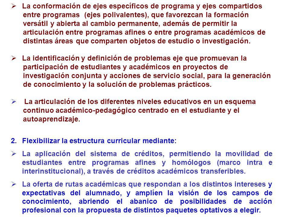 La conformación de ejes específicos de programa y ejes compartidos