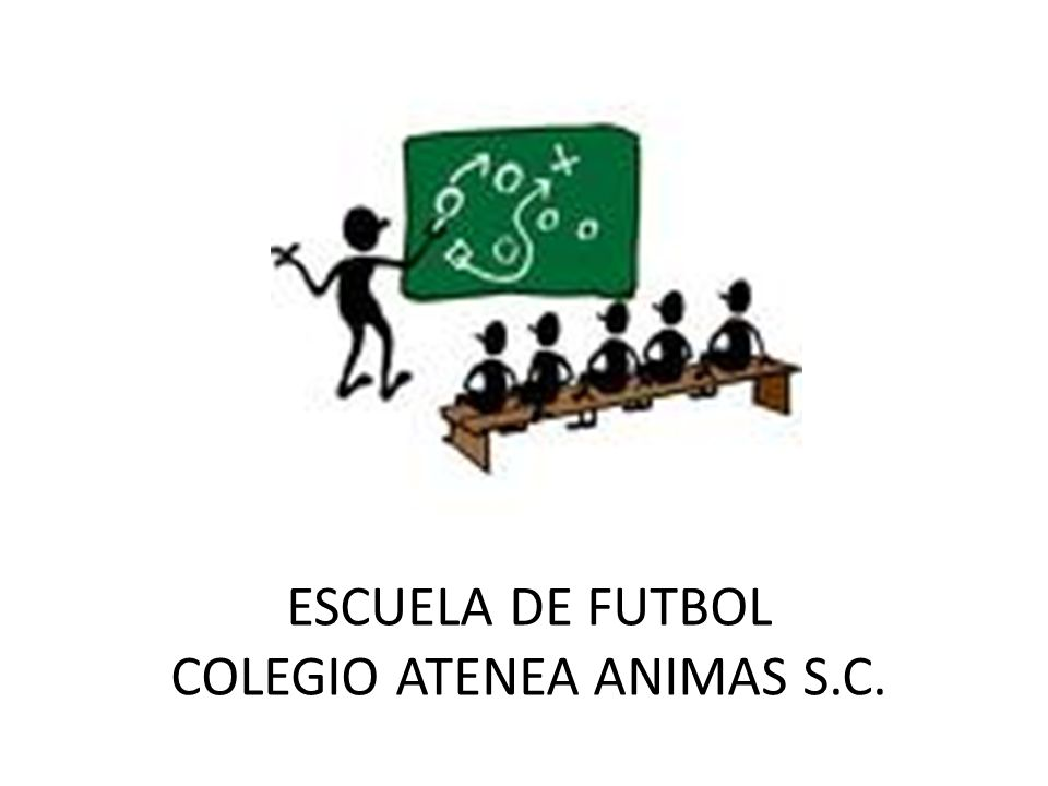 COLEGIO ATENEA ANIMAS S.C.