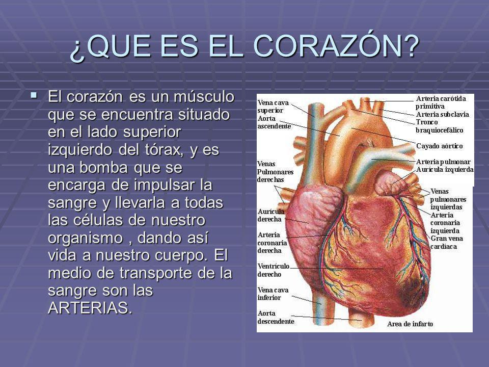 hipertensi n arterial ppt descargar