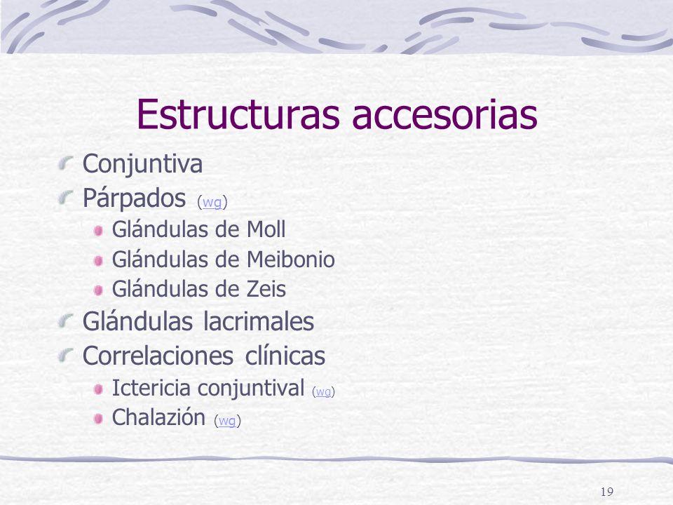 Estructuras accesorias