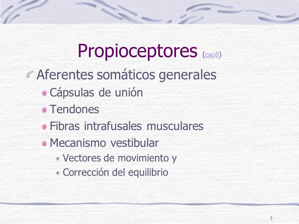 Propioceptores (cap8) Aferentes somáticos generales Cápsulas de unión