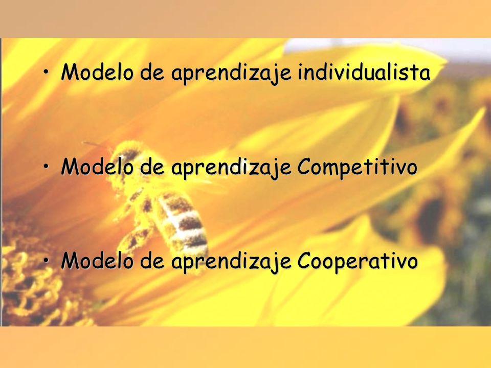 Modelo de aprendizaje individualista