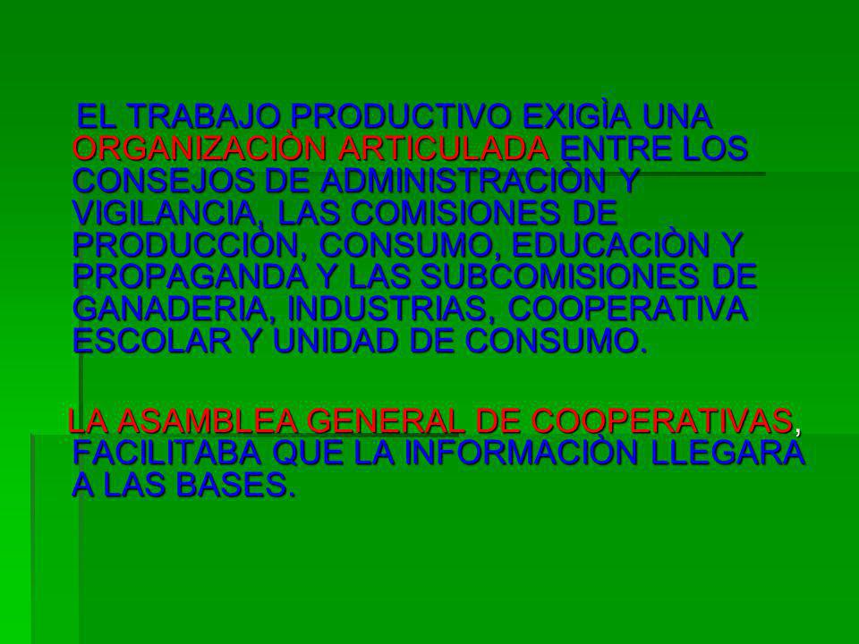 EL TRABAJO PRODUCTIVO EXIGÌA UNA ORGANIZACIÒN ARTICULADA ENTRE LOS CONSEJOS DE ADMINISTRACIÒN Y VIGILANCIA, LAS COMISIONES DE PRODUCCIÒN, CONSUMO, EDUCACIÒN Y PROPAGANDA Y LAS SUBCOMISIONES DE GANADERIA, INDUSTRIAS, COOPERATIVA ESCOLAR Y UNIDAD DE CONSUMO.