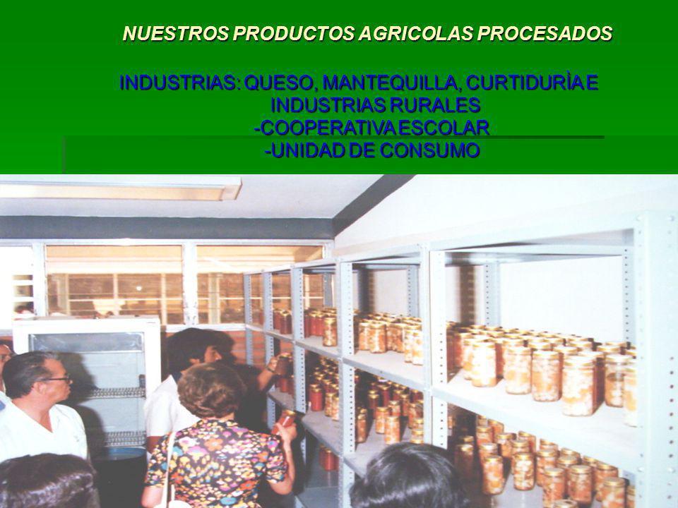 NUESTROS PRODUCTOS AGRICOLAS PROCESADOS