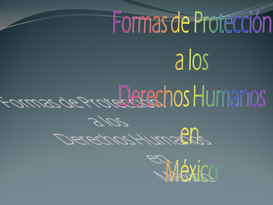 Formas de Protección a los Derechos Humanos en México