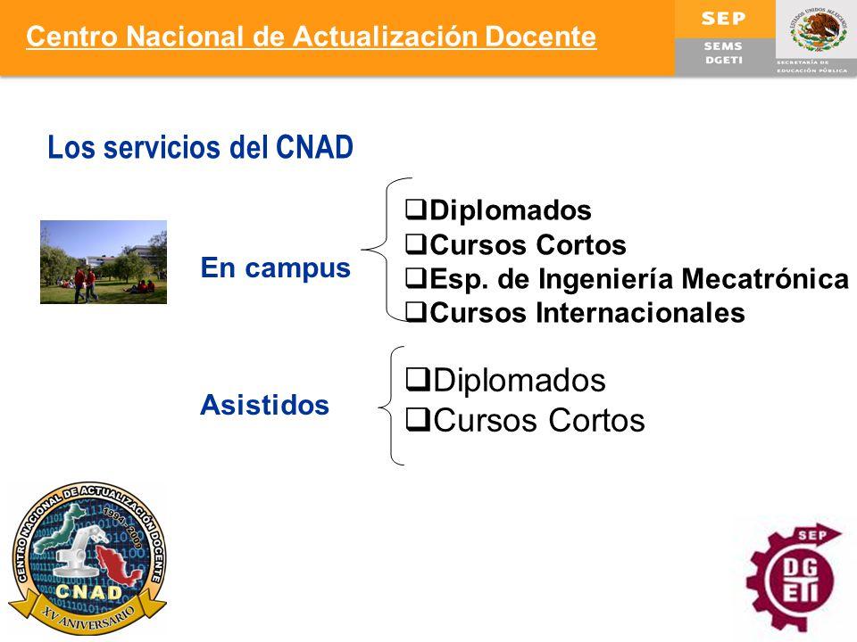 Los servicios del CNAD Diplomados Cursos Cortos