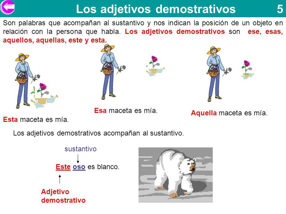 Los adjetivos demostrativos 5
