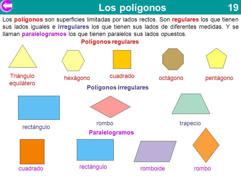 Los polígonos 19