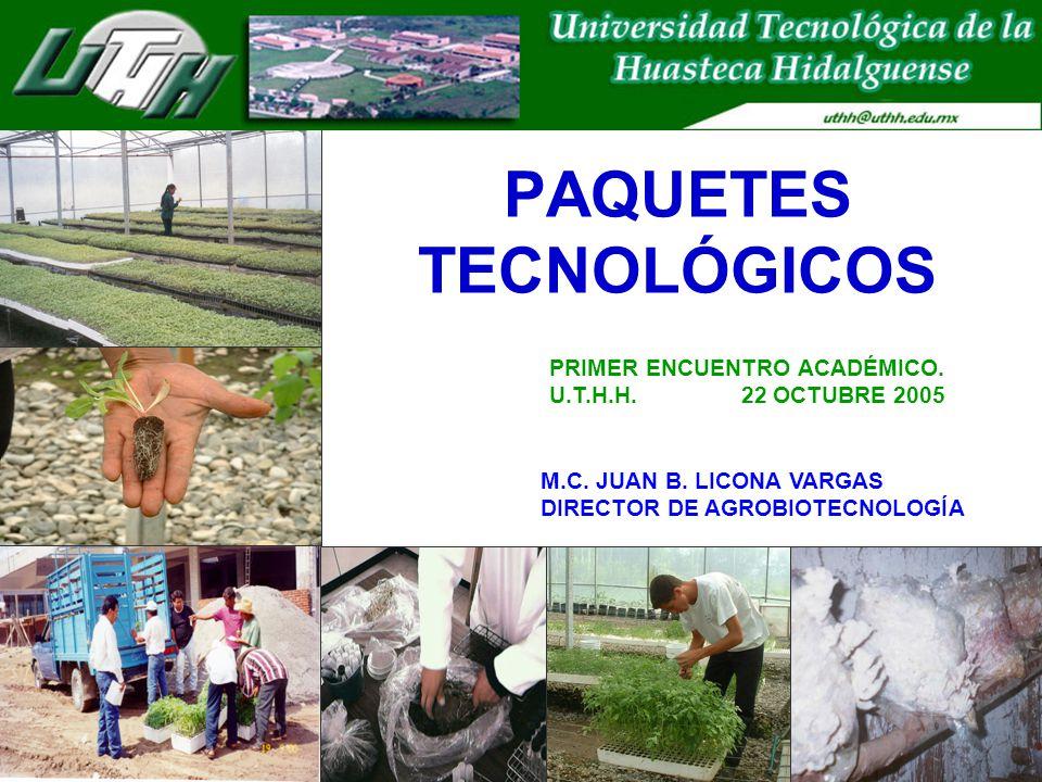PAQUETES TECNOLÓGICOS
