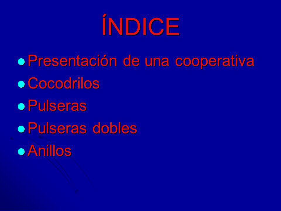 ÍNDICE Presentación de una cooperativa Cocodrilos Pulseras