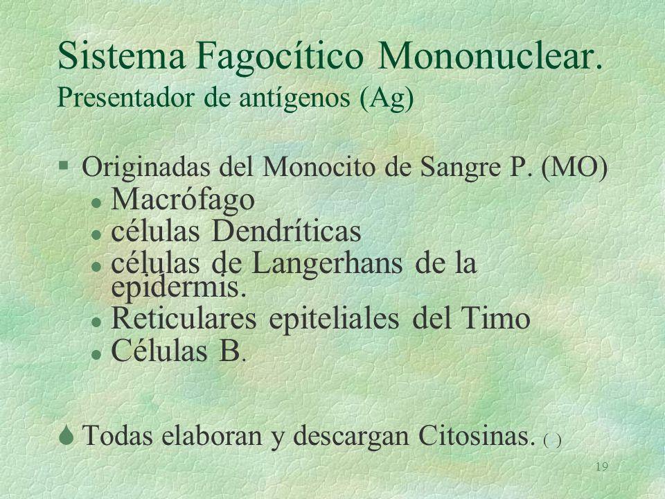 Sistema Fagocítico Mononuclear. Presentador de antígenos (Ag)