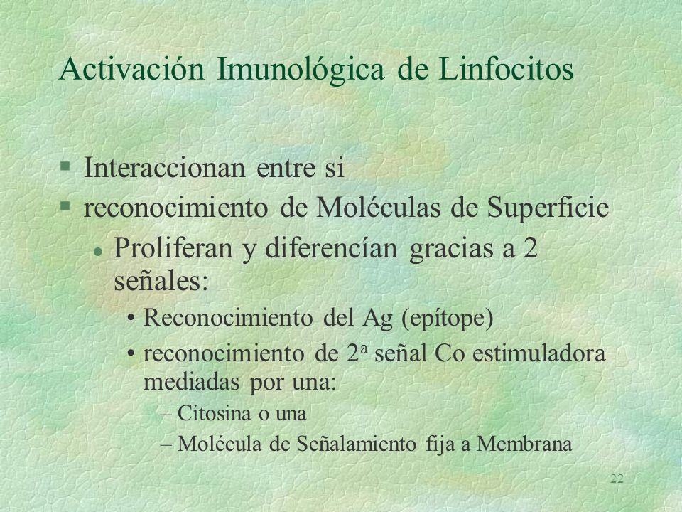 Activación Imunológica de Linfocitos
