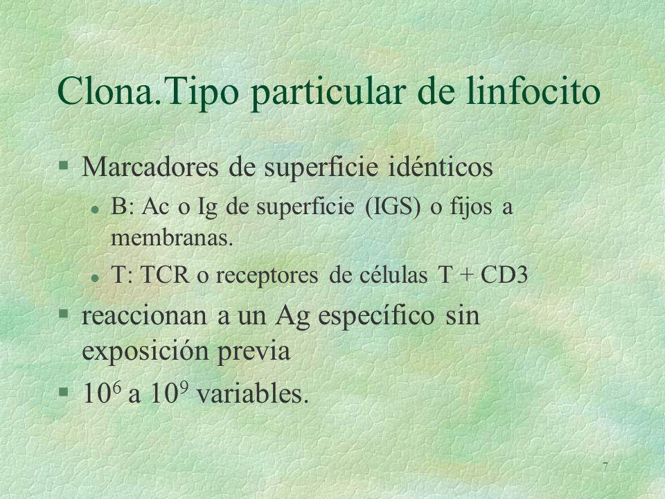 Clona.Tipo particular de linfocito