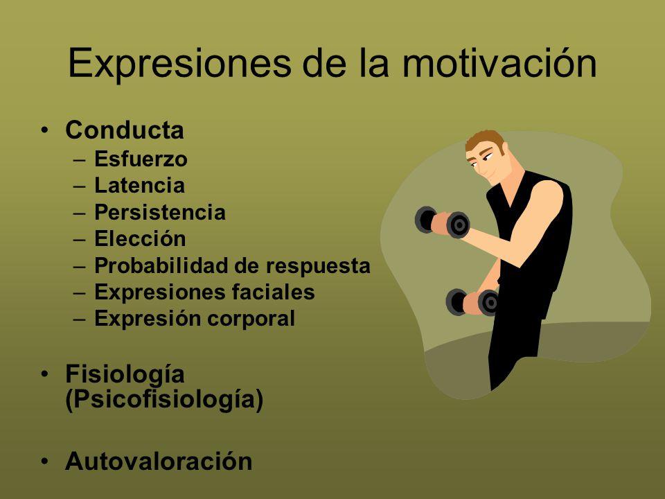 Expresiones de la motivación