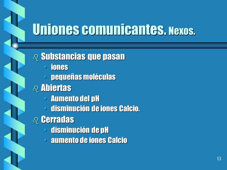 Uniones comunicantes. Nexos.