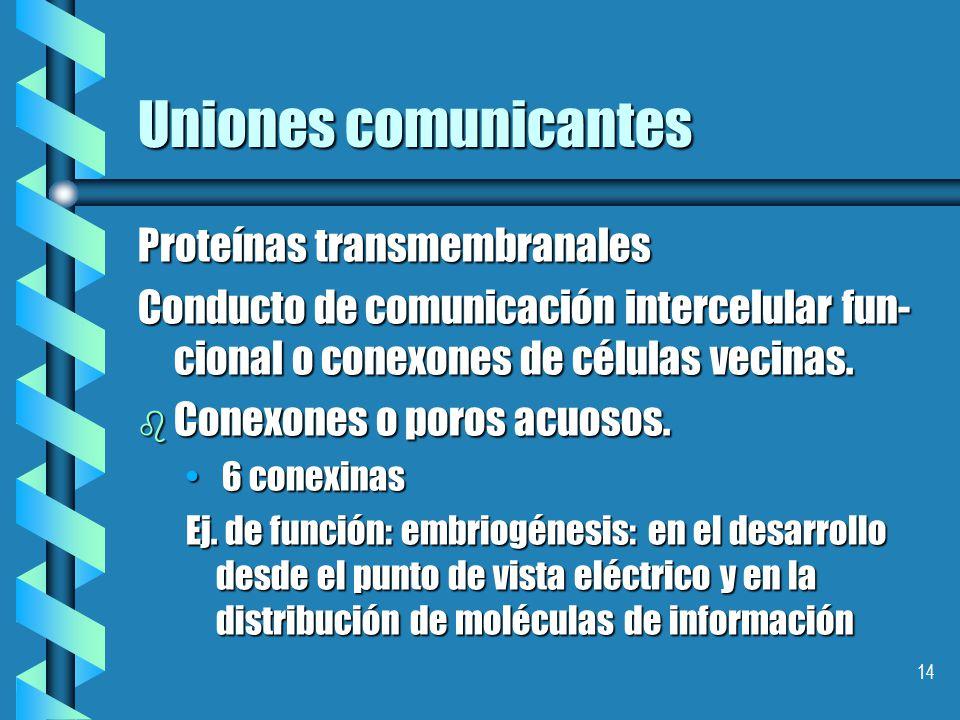 Uniones comunicantes Proteínas transmembranales