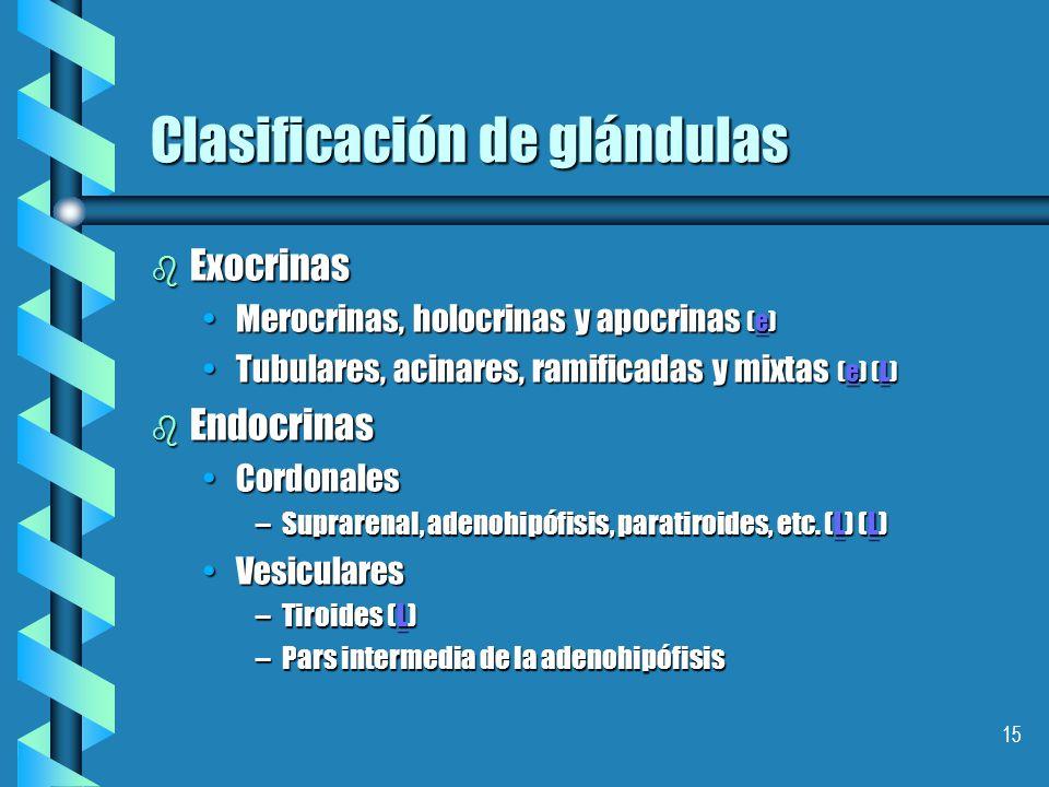 Clasificación de glándulas