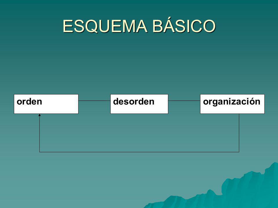 ESQUEMA BÁSICO orden desorden organización