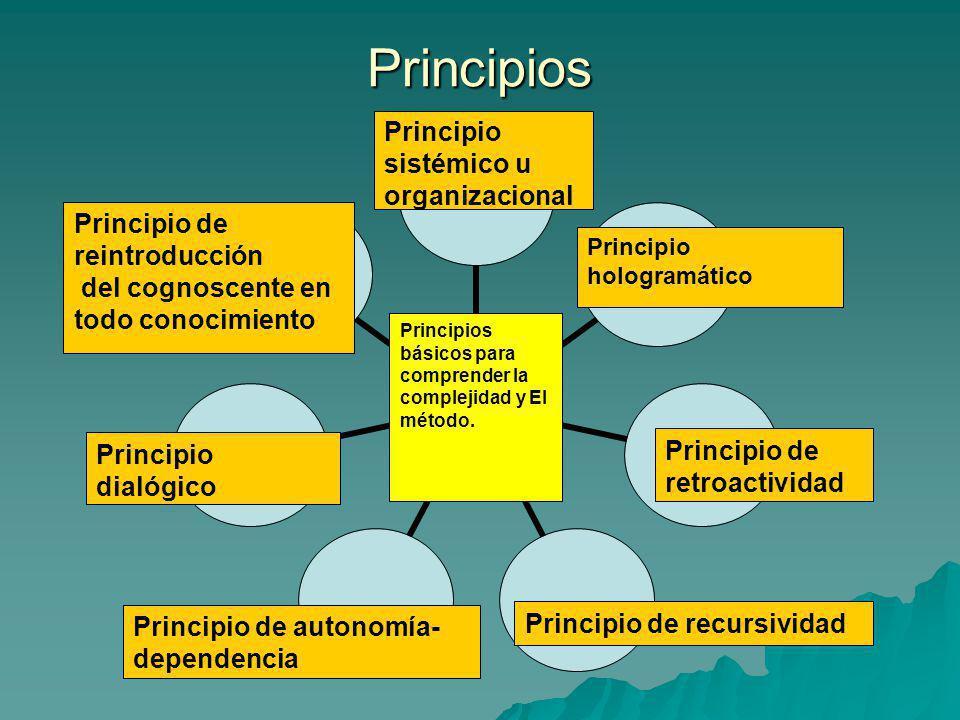 Principios Principio sistémico u organizacional