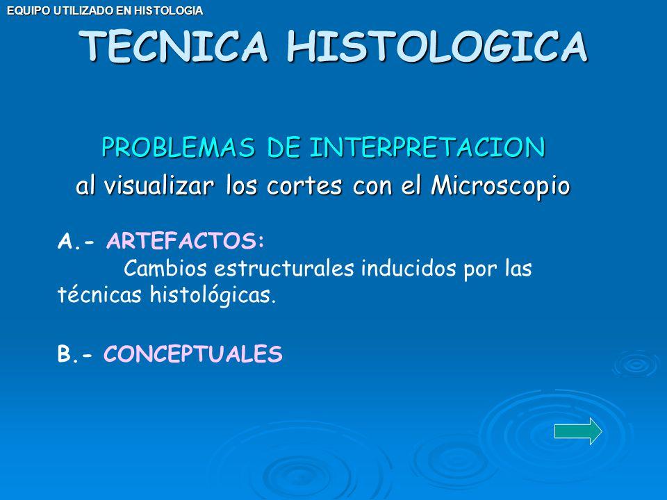 TECNICA HISTOLOGICA PROBLEMAS DE INTERPRETACION