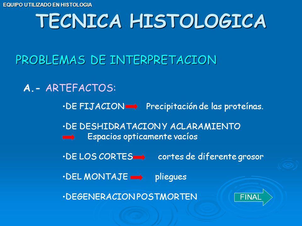 TECNICA HISTOLOGICA PROBLEMAS DE INTERPRETACION A.- ARTEFACTOS: