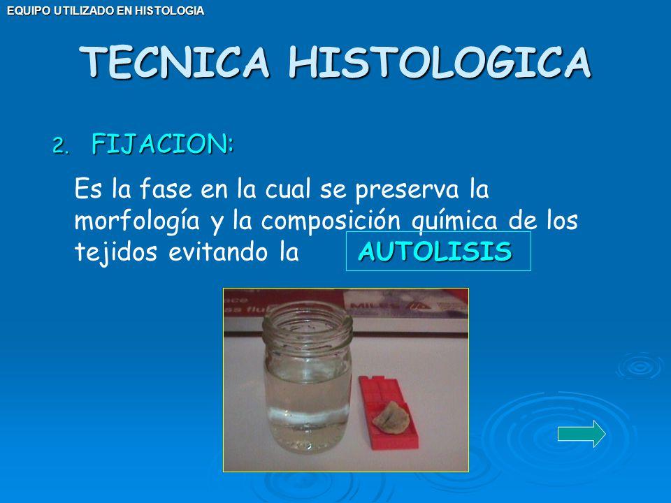 TECNICA HISTOLOGICA FIJACION: