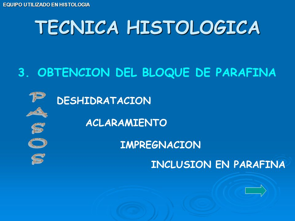 TECNICA HISTOLOGICA PASOS OBTENCION DEL BLOQUE DE PARAFINA