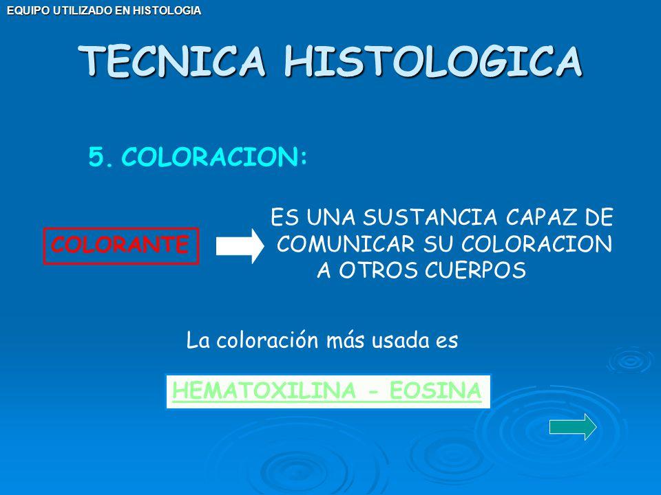 TECNICA HISTOLOGICA COLORACION: ES UNA SUSTANCIA CAPAZ DE
