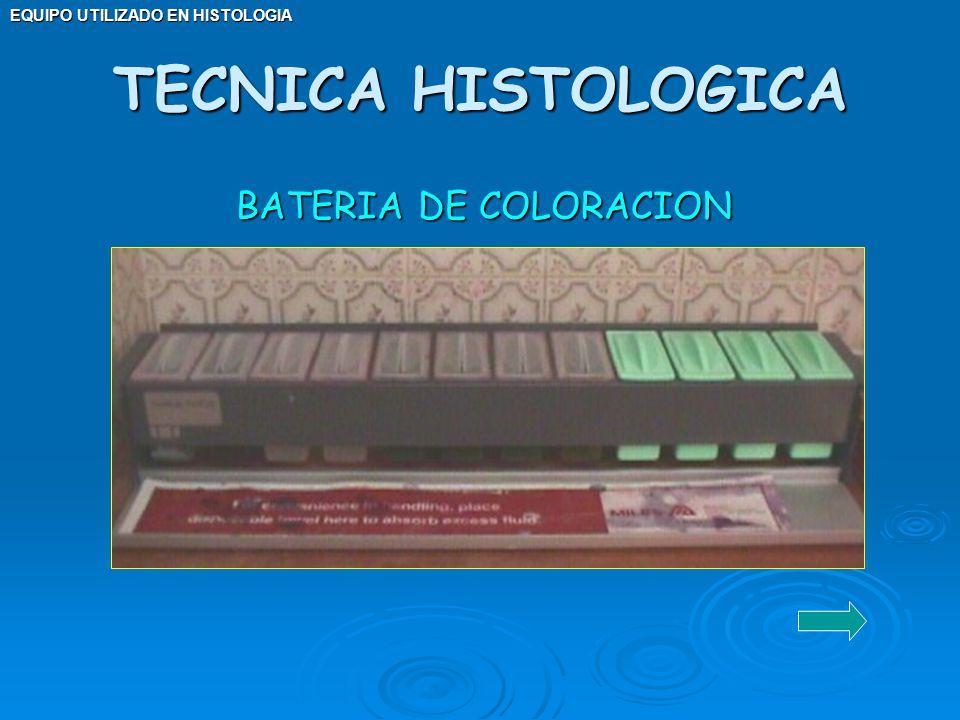 TECNICA HISTOLOGICA BATERIA DE COLORACION