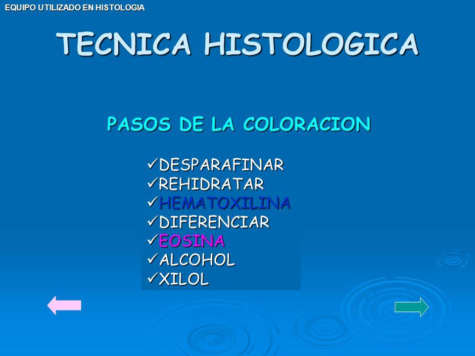 TECNICA HISTOLOGICA PASOS DE LA COLORACION DESPARAFINAR REHIDRATAR