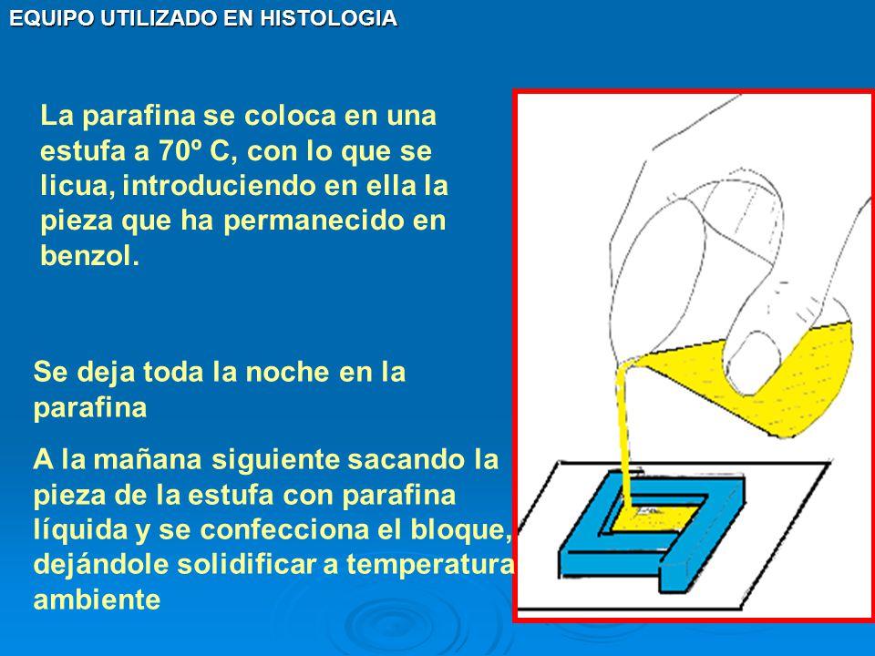 La parafina se coloca en una estufa a 70º C, con lo que se licua, introduciendo en ella la pieza que ha permanecido en benzol.