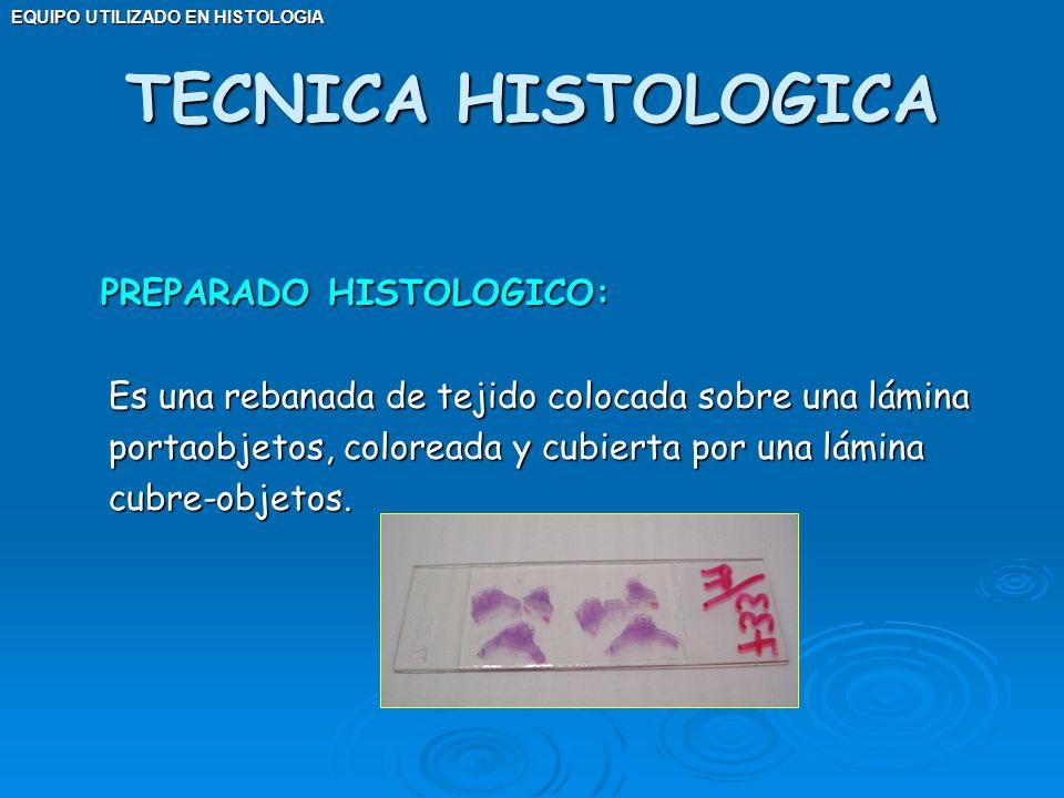 TECNICA HISTOLOGICA PREPARADO HISTOLOGICO:
