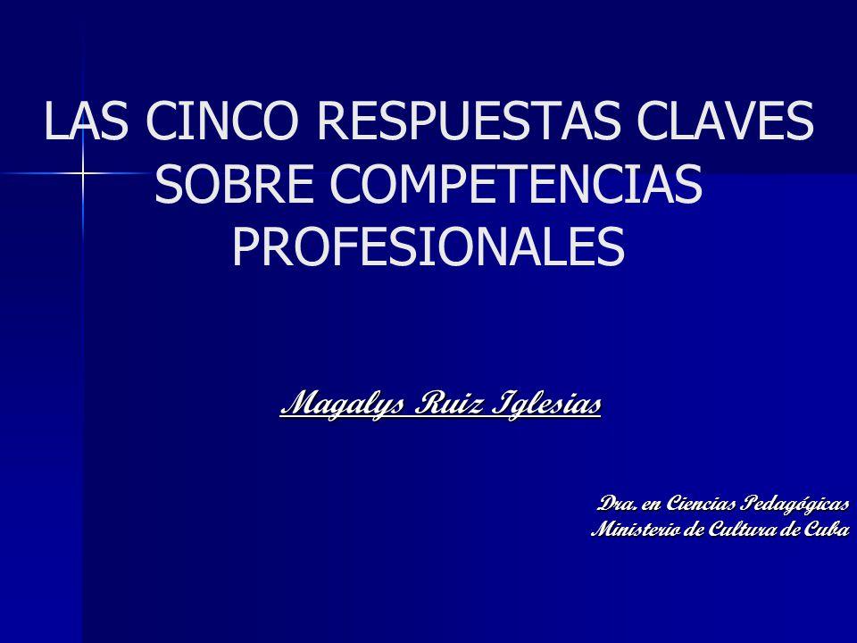 LAS CINCO RESPUESTAS CLAVES SOBRE COMPETENCIAS PROFESIONALES