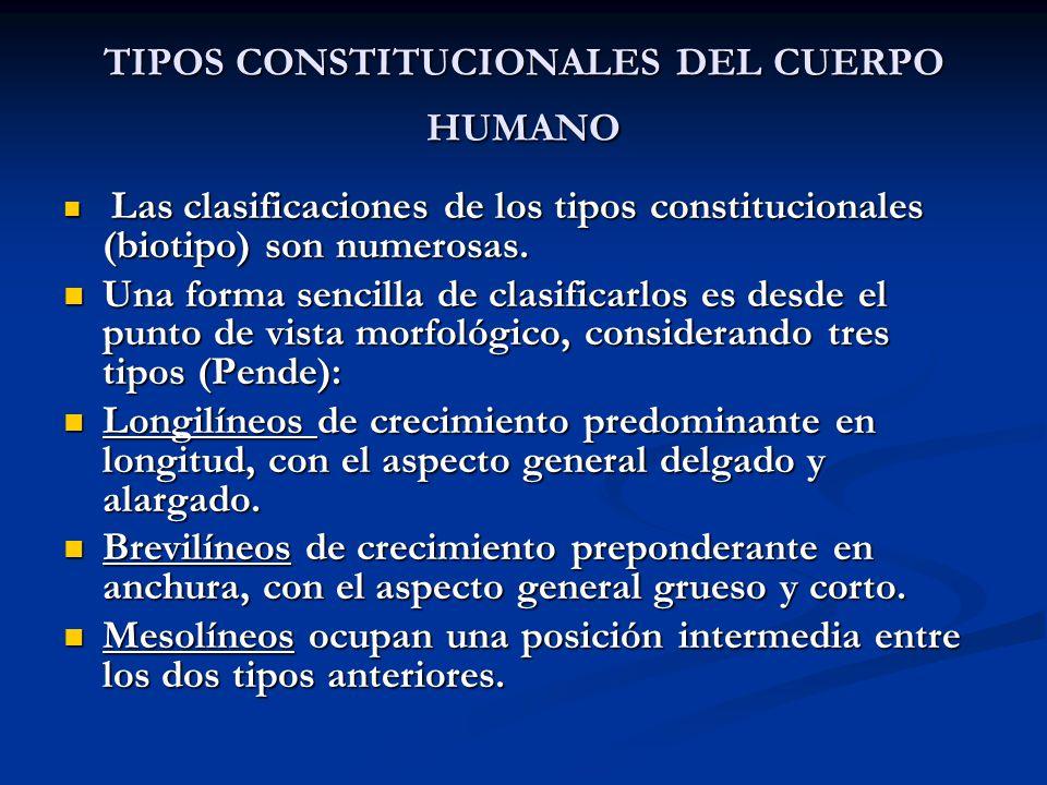 TIPOS CONSTITUCIONALES DEL CUERPO HUMANO
