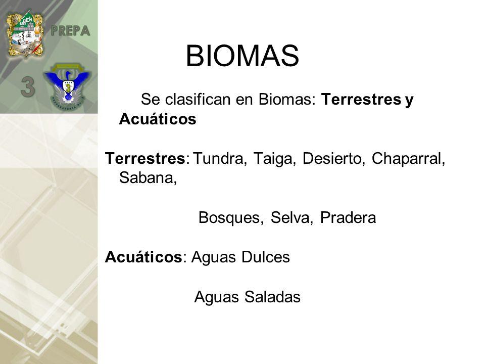 BIOMAS Se clasifican en Biomas: Terrestres y Acuáticos