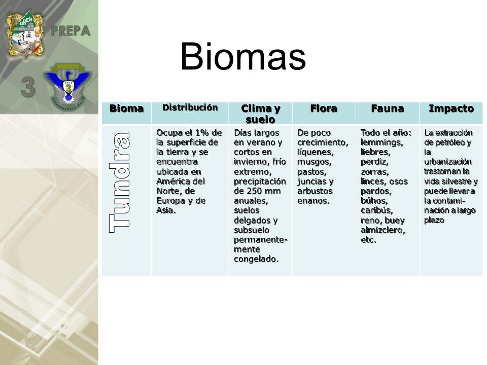 Biomas Tundra Bioma Clima y suelo Flora Fauna Impacto Distribución