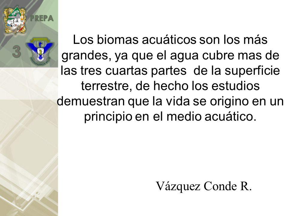 Los biomas acuáticos son los más grandes, ya que el agua cubre mas de las tres cuartas partes de la superficie terrestre, de hecho los estudios demuestran que la vida se origino en un principio en el medio acuático.