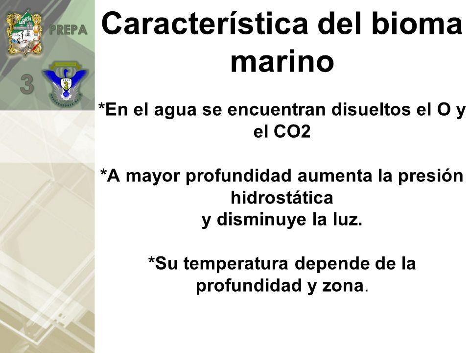 Característica del bioma marino