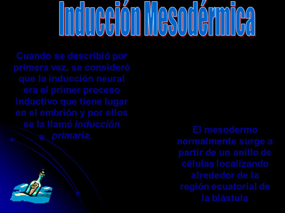 Inducción Mesodérmica