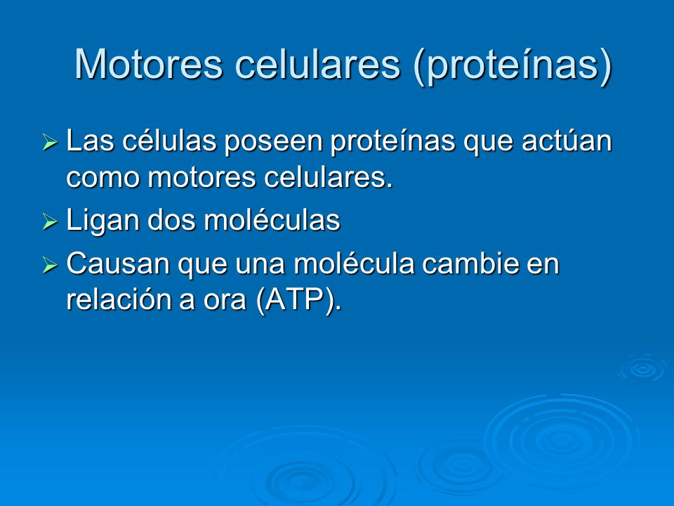Motores celulares (proteínas)