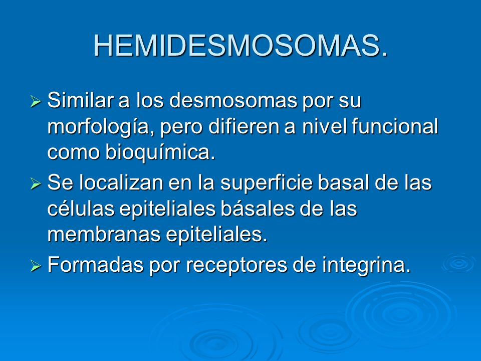 HEMIDESMOSOMAS. Similar a los desmosomas por su morfología, pero difieren a nivel funcional como bioquímica.