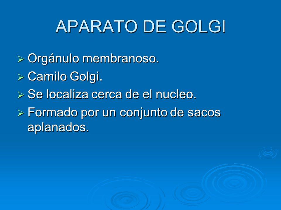APARATO DE GOLGI Orgánulo membranoso. Camilo Golgi.